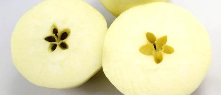 新鲜水果 黄金帅苹果 9个 箱 约1.8kg