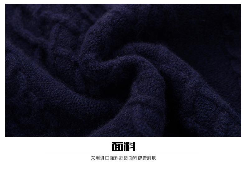 Áo len lông cừu nam Pierre Cardin 2017 180XL70 80KG WA86038 - ảnh 20