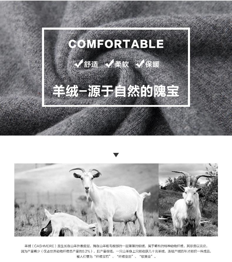 Áo len lông cừu nam Pierre Cardin 1002017 175L65 70KG WA095 - ảnh 3