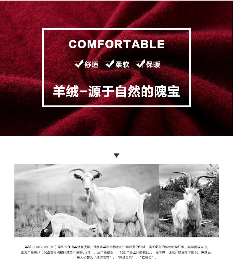 Áo len lông cừu nam Pierre Cardin V 175L65 70KG WA152 - ảnh 3