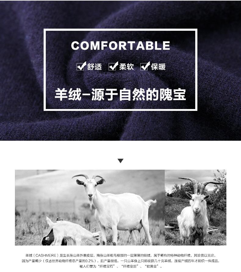 Áo len lông cừu nam Pierre Cardin 2017 175L65 70KG WA096 - ảnh 3