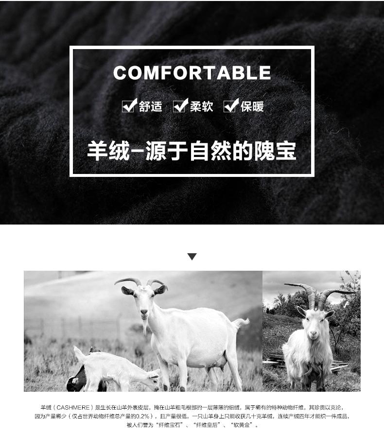 Áo len lông cừu nam Pierre Cardin 2017 180XL70 80KG WA78208 - ảnh 3