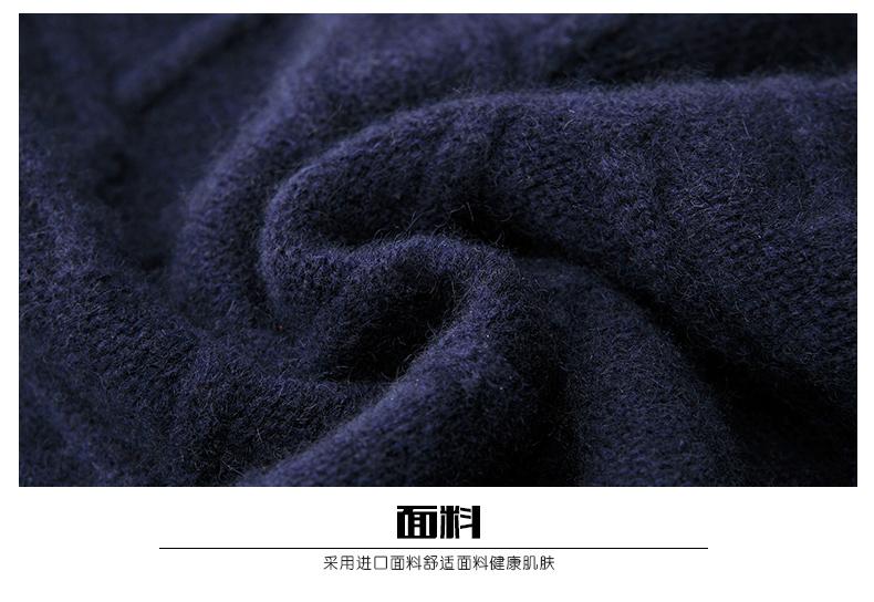 Áo len lông cừu nam Pierre Cardin 1002017 175L6570KG WA86158 - ảnh 24