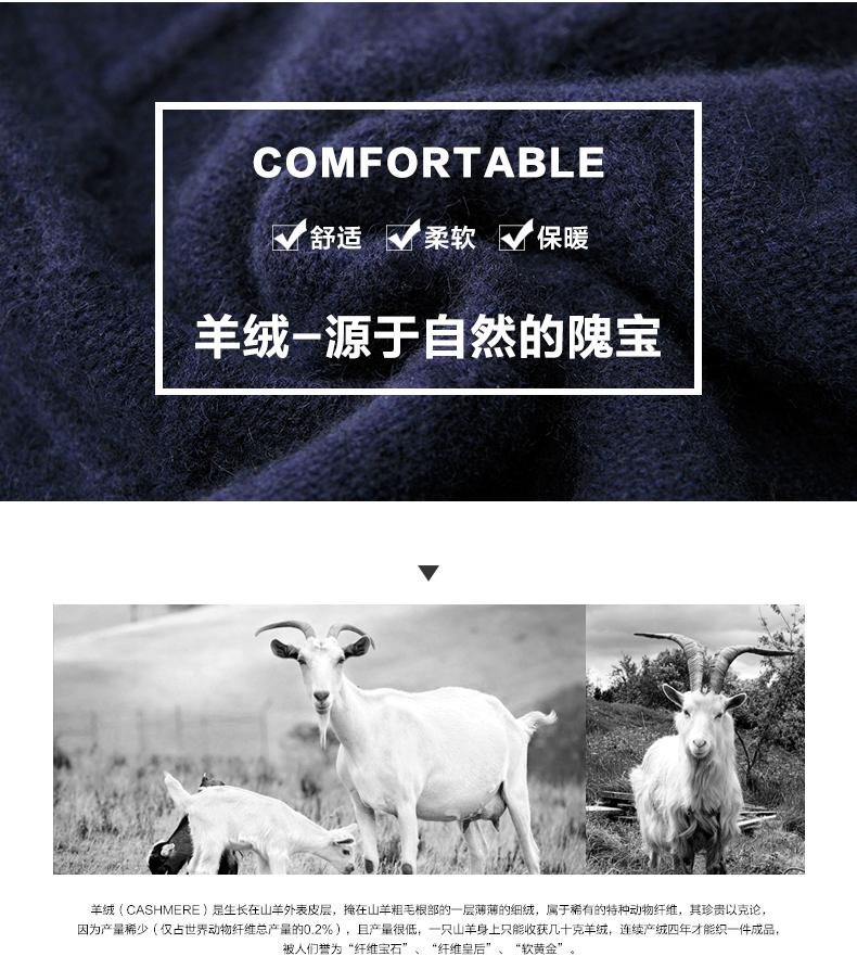 Áo len lông cừu nam Pierre Cardin 1002017 175L6570KG WA86158 - ảnh 3