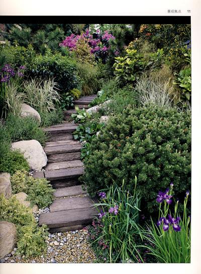 绿手指丛书----小花园种植图片