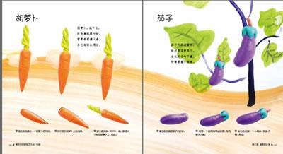 蔬菜手工制作橡皮泥步骤
