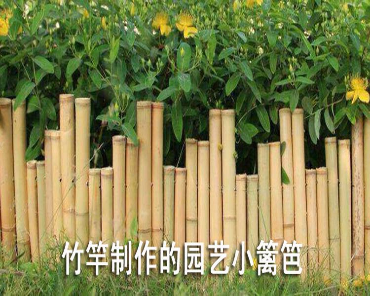竹子篱笆竹栅栏 菜园搭架 篱笆豆角竹竿围栏庭院护栏