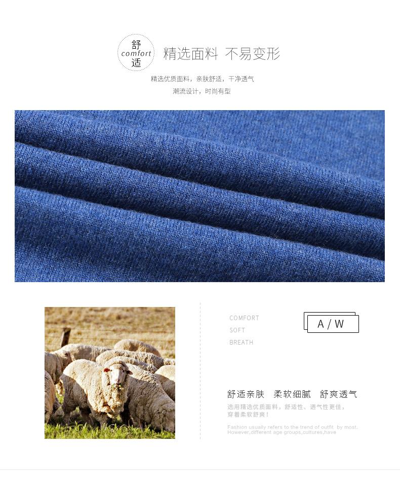 Áo len lông cừu nam Pierre Cardin 1002017V 175 PEKDBB-7519 - ảnh 2