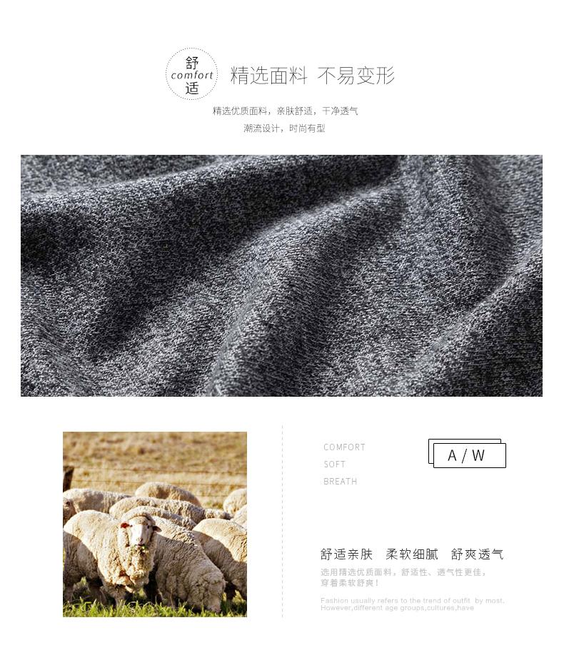 Áo len lông cừu nam Pierre Cardin 2017V 165 BB-7512 - ảnh 2