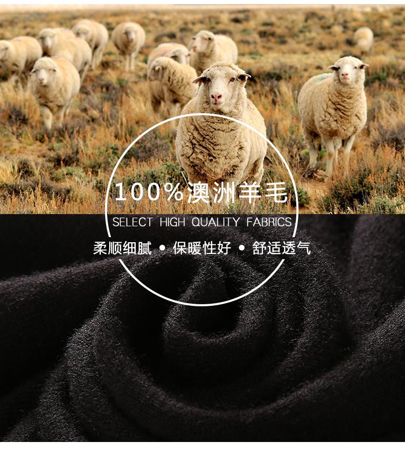 Áo len lông cừu nam Pierre Cardin 170M YJH828 - ảnh 9