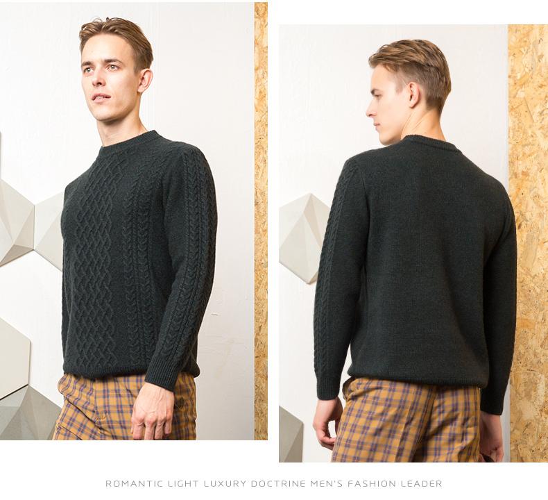Áo len lông cừu nam Pierre Cardin 2017 180XL70 80KG WA86038 - ảnh 15