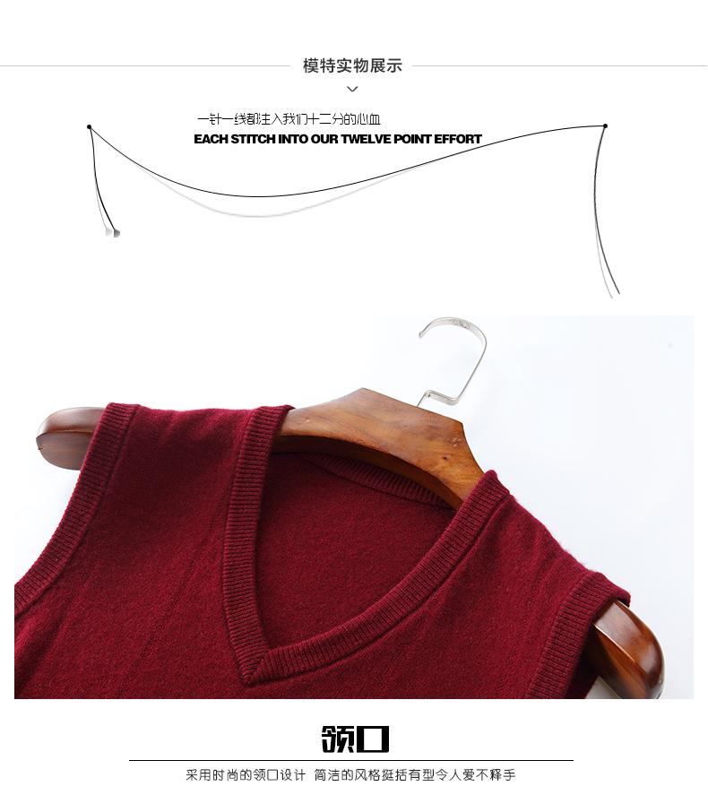 Áo len lông cừu nam Pierre Cardin V 175L65 70KG WA152 - ảnh 20