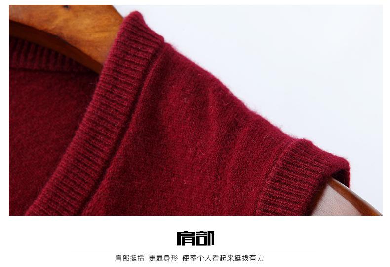 Áo len lông cừu nam Pierre Cardin V 175L65 70KG WA152 - ảnh 21