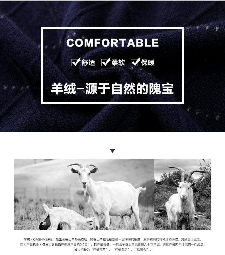 Áo len lông cừu nam Pierre Cardin 2017 170M55 65KG YR003 - ảnh 3