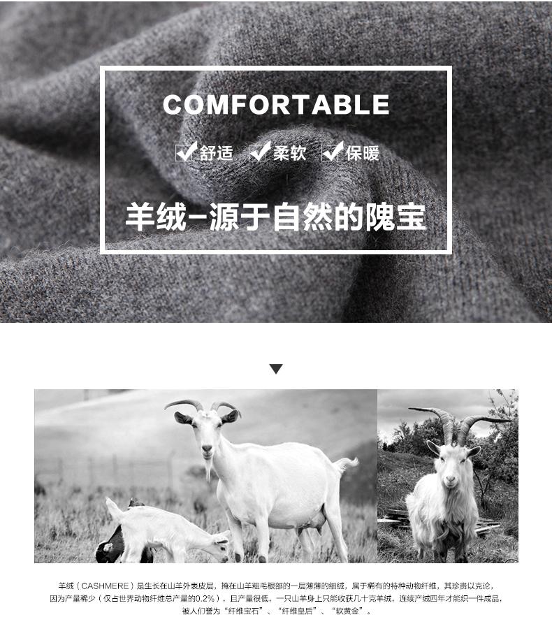 Áo len lông cừu nam Pierre Cardin 2017 180XL70 80KG WA78211 - ảnh 3