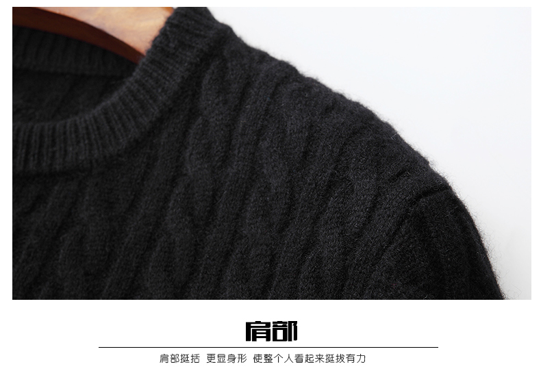 Áo len lông cừu nam Pierre Cardin 2017 180XL70 80KG WA78208 - ảnh 17