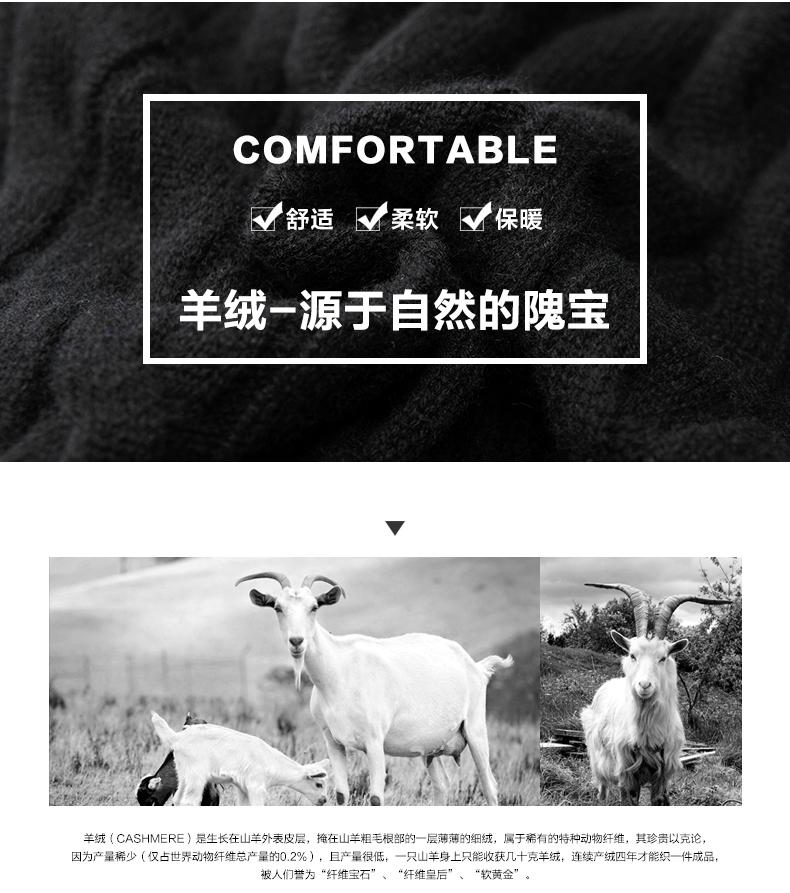 Áo len lông cừu nam Pierre Cardin 2017 180XL70 80KG WA78210 - ảnh 3