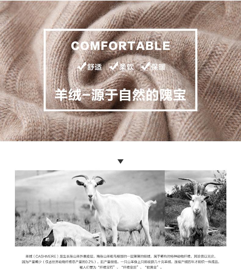 Áo len lông cừu nam Pierre Cardin 2017 180XL70 80KG WA87021 - ảnh 3