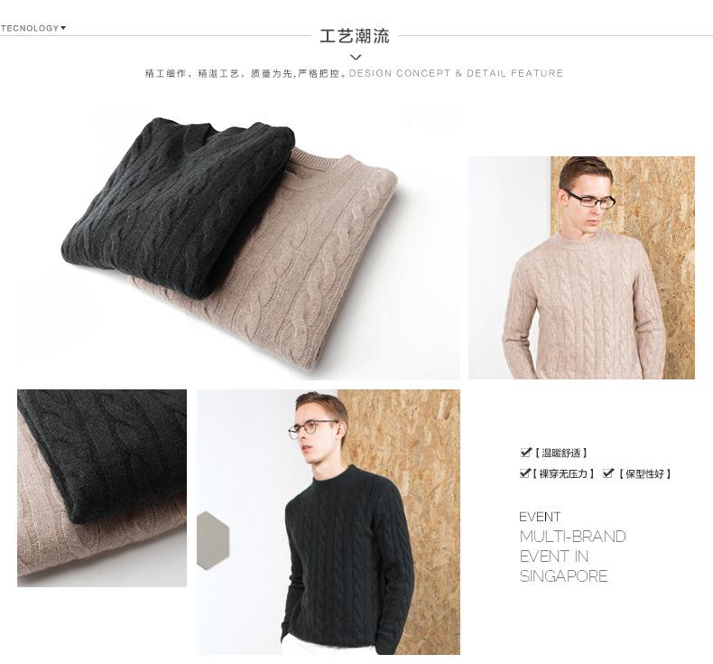 Áo len lông cừu nam Pierre Cardin 2017 180XL70 80KG WA87021 - ảnh 7