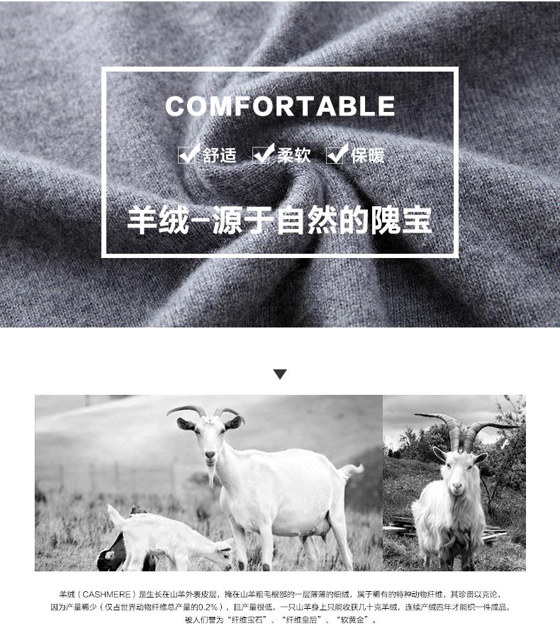 Áo len lông cừu nam Pierre Cardin T2017 180XL70 80KG XHDX-1 - ảnh 3