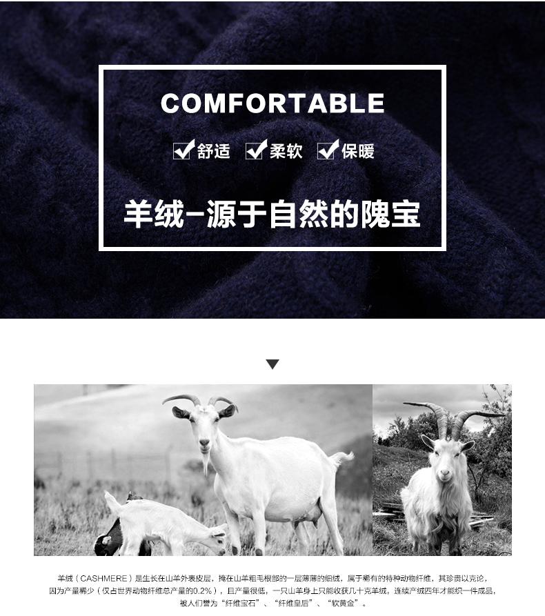 Áo len lông cừu nam Pierre Cardin 2017 180XL70 80KG WA86038 - ảnh 3
