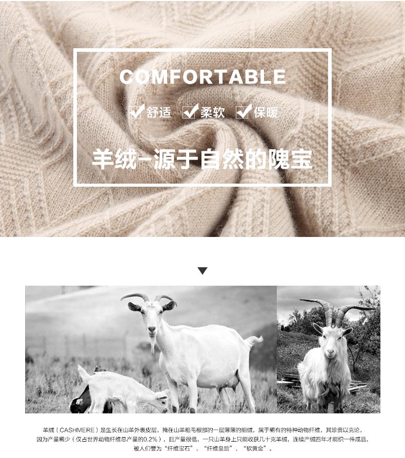 Áo len lông cừu nam Pierre Cardin 2017 180XL70 80KG YR001 - ảnh 3