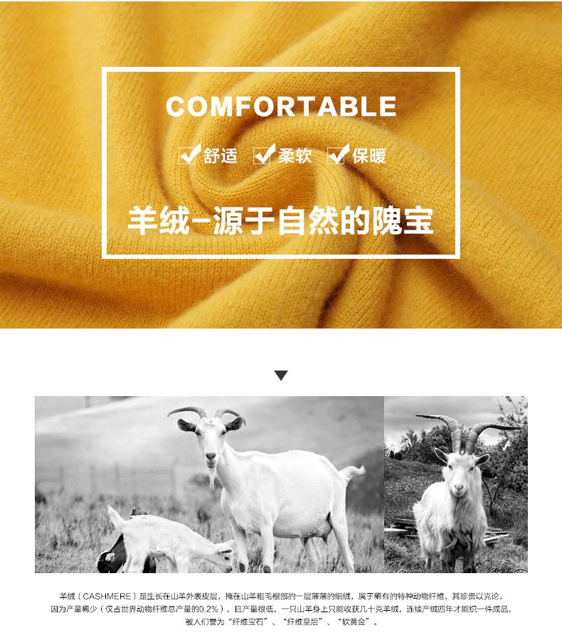 Áo len lông cừu nam Pierre Cardin 2017 180XL70 80KG YR006 - ảnh 3