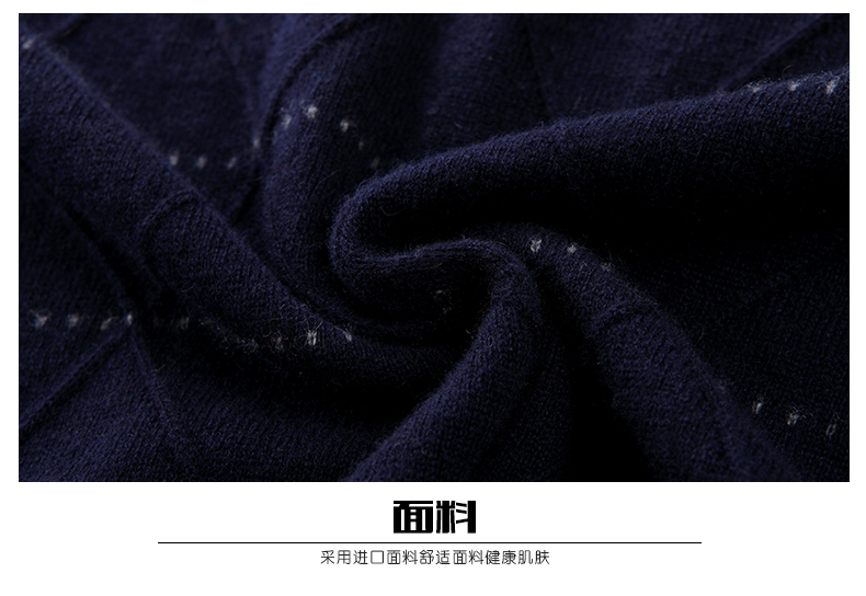 Áo len lông cừu nam Pierre Cardin 2017 170M55 65KG YR003 - ảnh 24