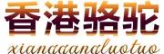 香港骆驼旗舰店
