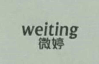 微婷(weiting)