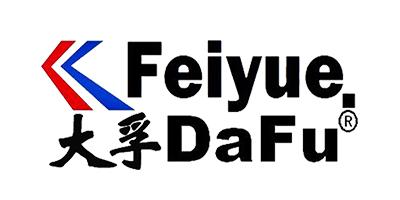 大孚飞跃(dafufeiyue)