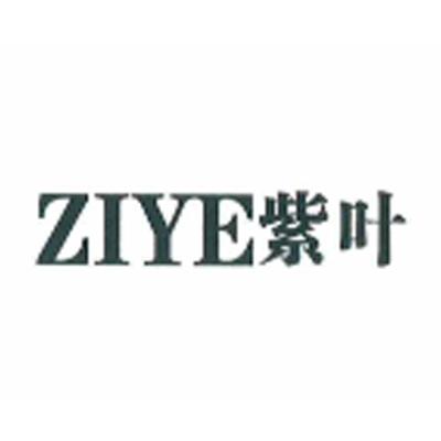 紫叶(ZIYE)
