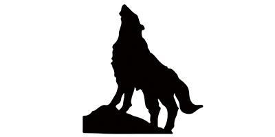 北极狼(BeiJiLang)