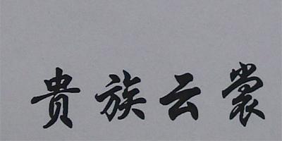 贵族云裳(GUIZUYUNSHANG)