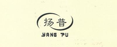 扬普(YANG PU)