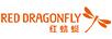 红蜻蜓(RED DRAGONFLY)