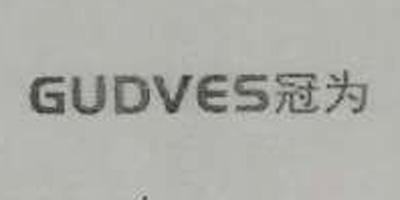 冠为(GUDVES)