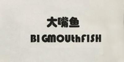 大嘴鱼(BIGmouthfISH)