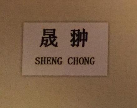 晟翀(SHENGCHONG)