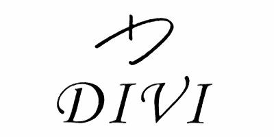 迪威(DIVI)
