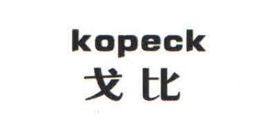 戈比(kopeck)