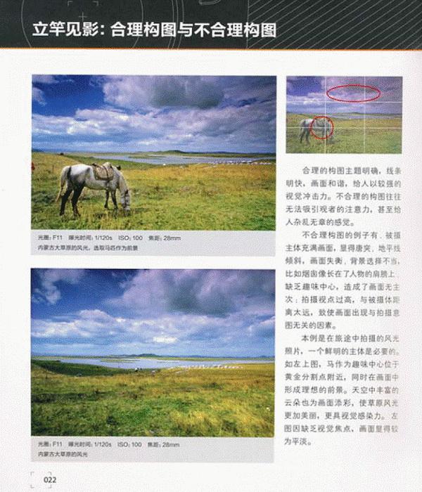 摄影构图圣经 摄影构图圣经 14 在线阅读 时尚休闲 京东读书图片