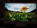 爱国者(aigo) 数码相框DPF101 10.1英寸 高清电子相册 智能家居 可遥控 支持音乐视频 白色