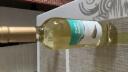 玛利亚海之情(Maria)干红葡萄酒750ml *6瓶 整箱装 西班牙进口红酒