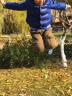 361度童鞋 男女童運動鞋新款鞋男中大童休閑鞋男童鞋兒童跑鞋 鈷藍/網絡藍3590-男童 31 實拍圖