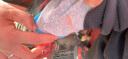 南極人(Nanjiren)兒童內衣 男女童黃金絨暖甲保暖內衣一體加絨加厚秋衣秋褲套裝 麻灰 150 實拍圖