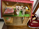 森貝兒家族兒童玩具女孩禮物過家家公主娃娃玩具甜夢小屋5242 實拍圖
