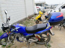 Roadseek摩托車尾箱后備箱電動車工具箱雜物箱中號大號大容量儲物箱 藍色 02大號(長40CM*寬37CM*28CM) 實拍圖