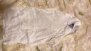 全棉時代 汗巾隔汗巾嬰兒紗布汗巾 隔汗巾25*50cm 船錨+輪船+帆船 3條/袋 實拍圖