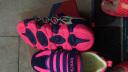 哈比熊童鞋男童鞋秋款女童鞋子中大童兒童運動鞋休閑鞋跑步鞋 紫/桃紅 33碼/21.1cm內長 實拍圖